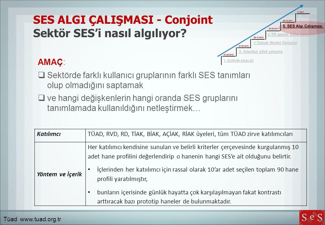 28 SES ALGI ÇALIŞMASI - Conjoint Sektör SES'i nasıl algılıyor.
