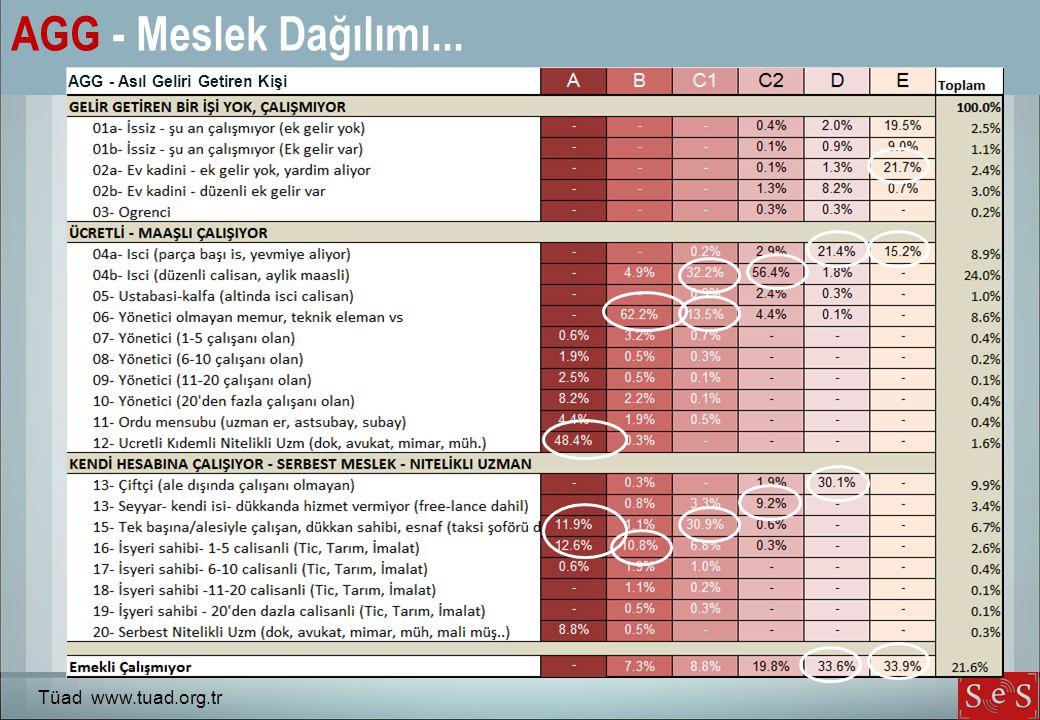 AGG - Meslek Dağılımı... AGG - Asıl Geliri Getiren Kişi Tüad www.tuad.org.tr