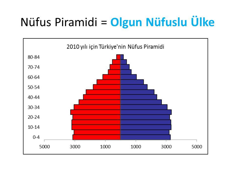 Nüfus Piramidi = Olgun Nüfuslu Ülke