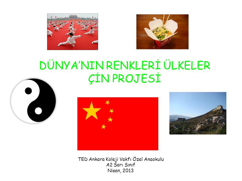 DÜNYA'NIN RENKLERİ ÜLKELER ÇİN PROJESİ TED Ankara Koleji Vakfı Özel Anaokulu A2 Sarı Sınıf Nisan, 2013