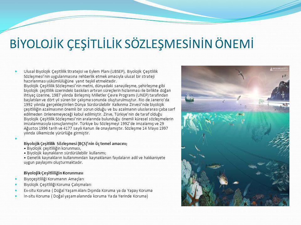 BİYOLOJİK ÇEŞİTLİLİK SÖZLEŞMESİNİN ÖNEMİ  Ulusal Biyolojik Çeşitlilik Stratejisi ve Eylem Planı (UBSEP), Biyolojik Çeşitlilik Sözleşmesi'nin uygulanm