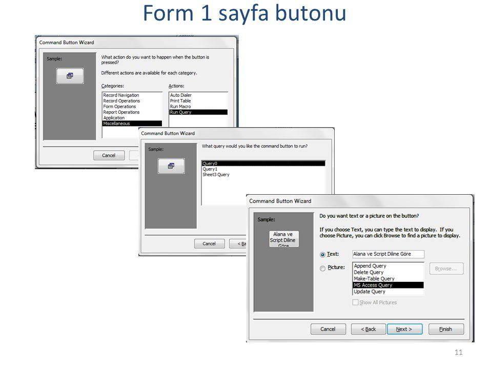 11 Form 1 sayfa butonu