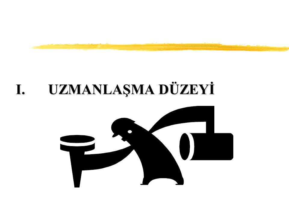 I.UZMANLAŞMA DÜZEYİ