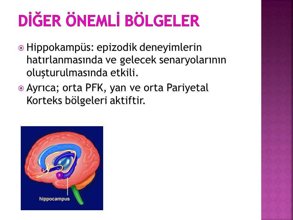  Hippokampüs: epizodik deneyimlerin hatırlanmasında ve gelecek senaryolarının oluşturulmasında etkili.  Ayrıca; orta PFK, yan ve orta Pariyetal Kort