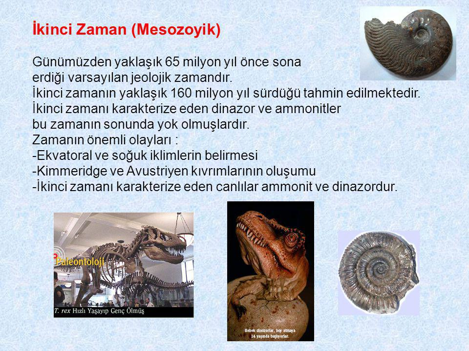 İkinci Zaman (Mesozoyik) Günümüzden yaklaşık 65 milyon yıl önce sona erdiği varsayılan jeolojik zamandır.