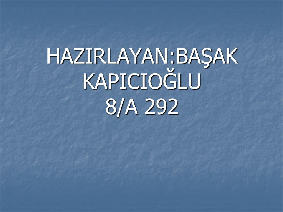 HAZIRLAYAN:BAŞAK KAPICIOĞLU 8/A 292