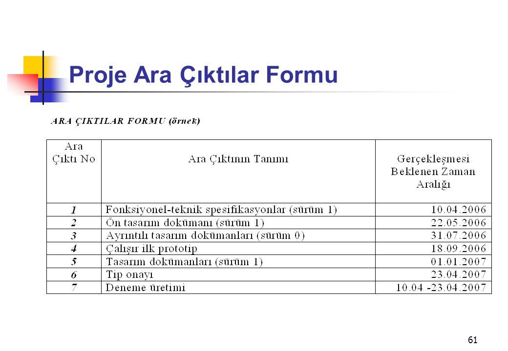 61 Proje Ara Çıktılar Formu