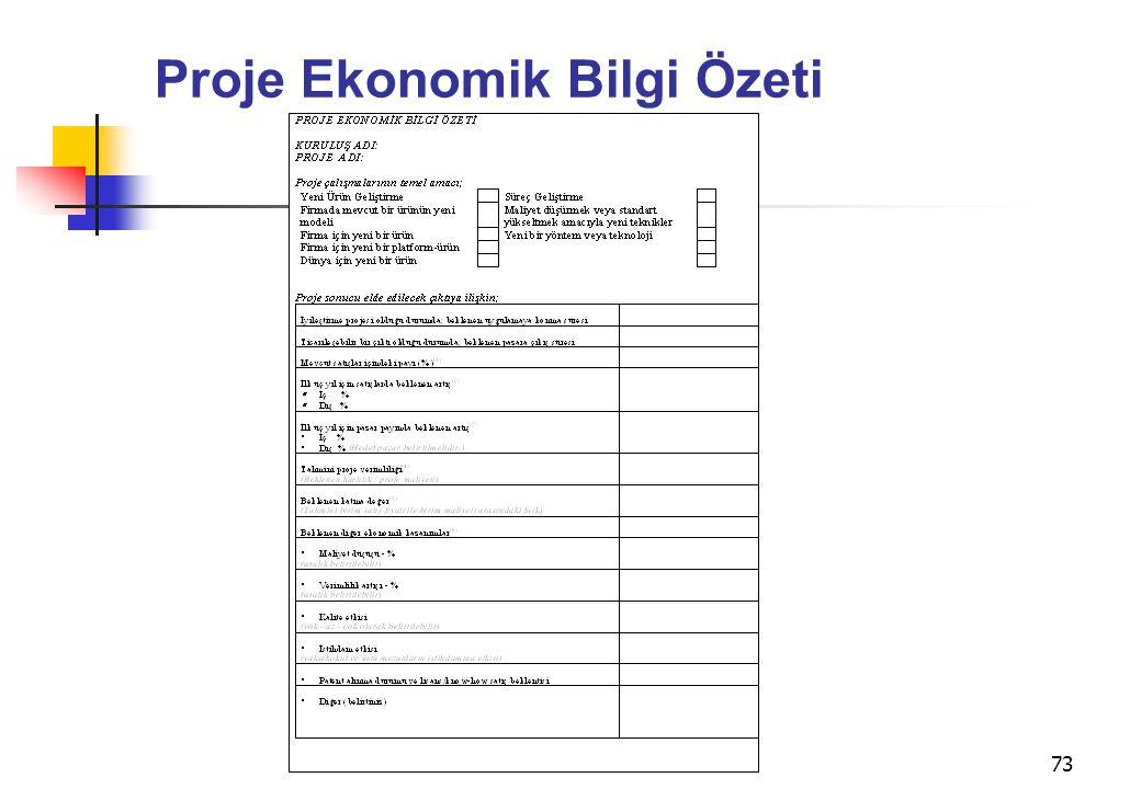 73 Proje Ekonomik Bilgi Özeti