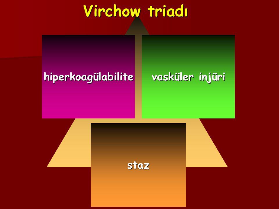 staz vasküler injüri hiperkoagülabilite Virchow triadı