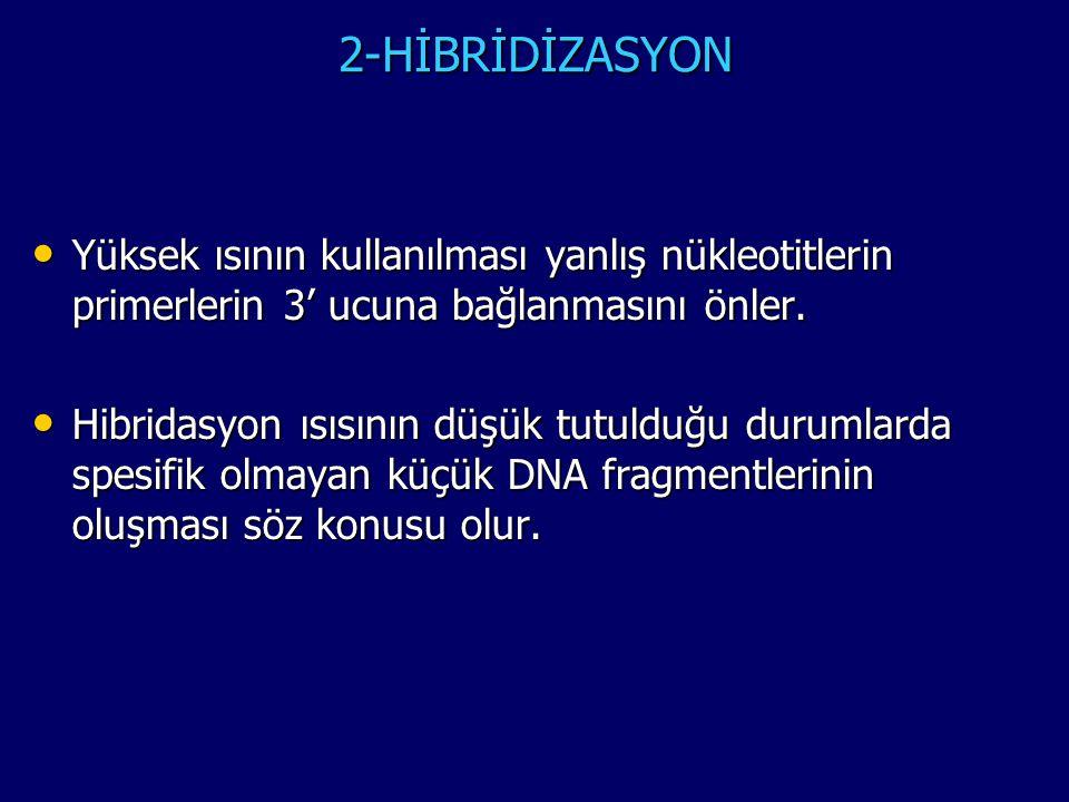 2-HİBRİDİZASYON • Yüksek ısının kullanılması yanlış nükleotitlerin primerlerin 3' ucuna bağlanmasını önler. • Hibridasyon ısısının düşük tutulduğu dur
