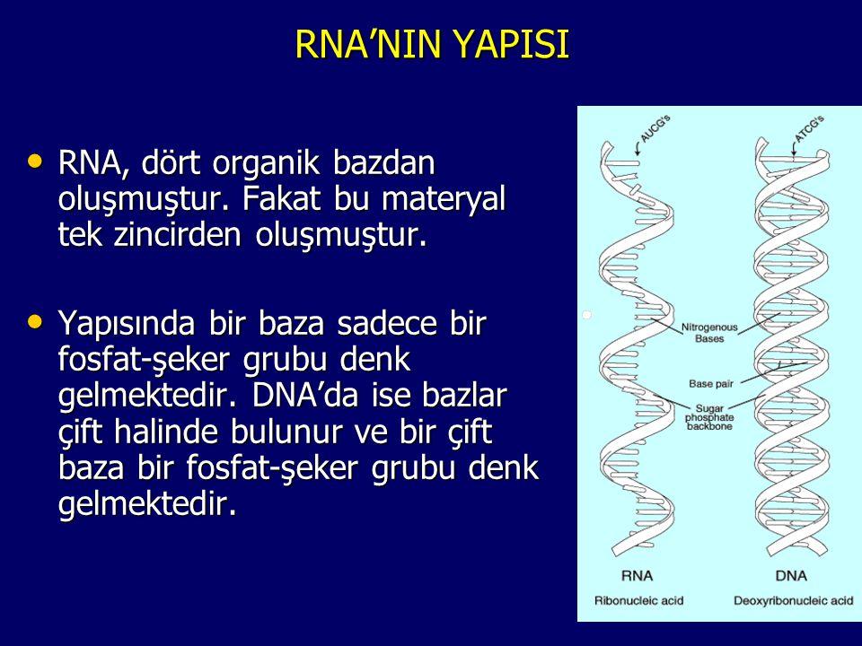 DNA'NIN GÖREVLERİ • Ebeveynlerden çocuğa aktarılacak genetik bilgiyi taşır.