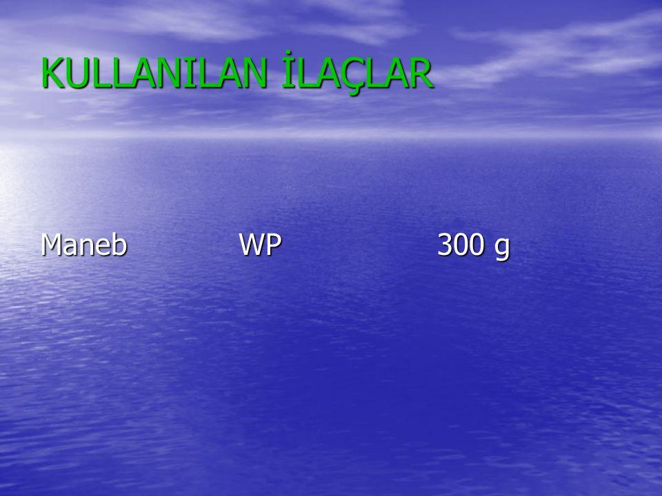 KULLANILAN İLAÇLAR ManebWP300 g
