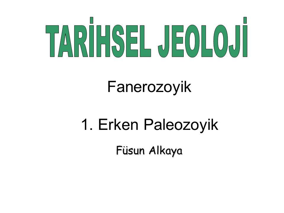 Füsun Alkaya Fanerozoyik 1. Erken Paleozoyik