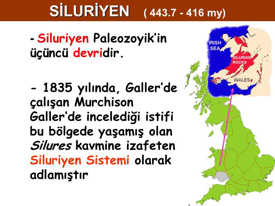 - Siluriyen Paleozoyik'in üçüncü devridir. - 1835 yılında, Galler'de çalışan Murchison Galler'de incelediği istifi bu bölgede yaşamış olan Silures kav