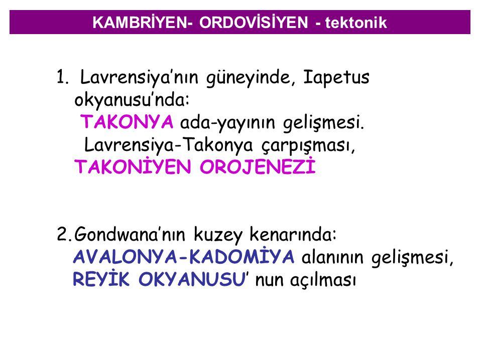 KAMBRİYEN- ORDOVİSİYEN - tektonik 1.