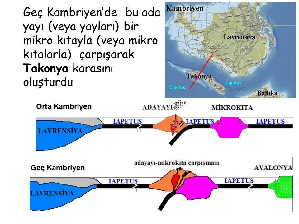 Orta Kambriyen Geç Kambriyen KG Geç Kambriyen'de bu ada yayı (veya yayları) bir mikro kıtayla (veya mikro kıtalarla) çarpışarak Takonya karasını oluşturdu