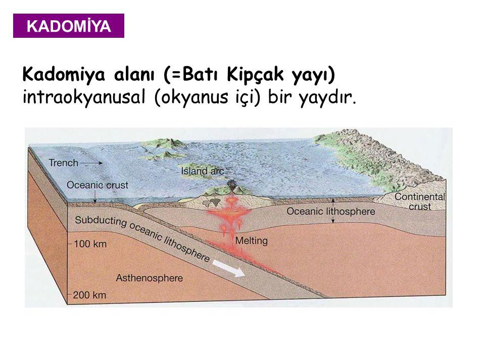 Kadomiya alanı (=Batı Kipçak yayı) intraokyanusal (okyanus içi) bir yaydır. KADOMİYA