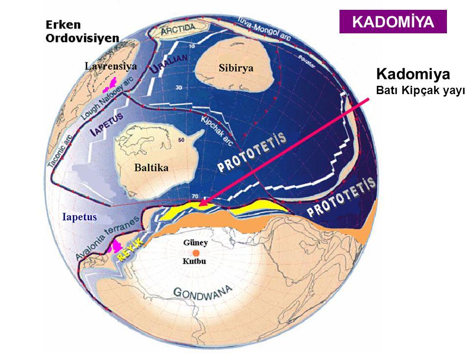 Kadomiya Batı Kipçak yayı KADOMİYA