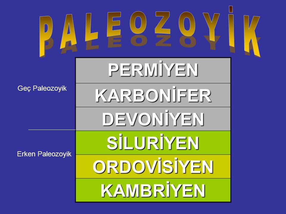 PERMİYENKARBONİFER DEVONİYEN SİLURİYEN ORDOVİSİYEN KAMBRİYEN Erken Paleozoyik Geç Paleozoyik