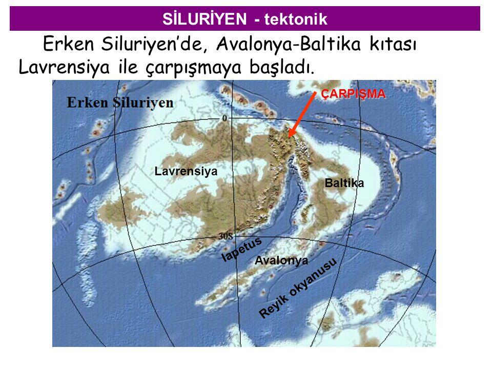 SİLURİYEN - tektonik Erken Siluriyen'de, Avalonya-Baltika kıtası Lavrensiya ile çarpışmaya başladı. Lavrensiya Baltika Avalonya Iapetus Reyik okyanusu