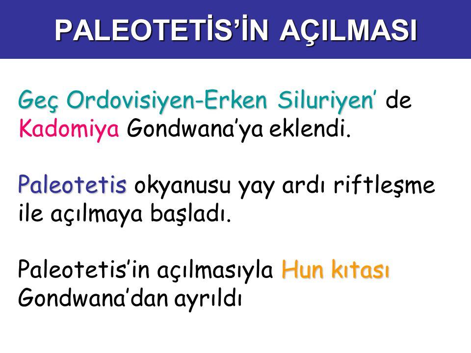 PALEOTETİS'İN AÇILMASI Geç Ordovisiyen-Erken Siluriyen Geç Ordovisiyen-Erken Siluriyen' de Kadomiya Gondwana'ya eklendi. Paleotetis Paleotetis okyanus