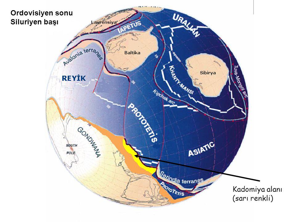 Ordovisiyen sonu Siluriyen başı Kadomiya alanı (sarı renkli)