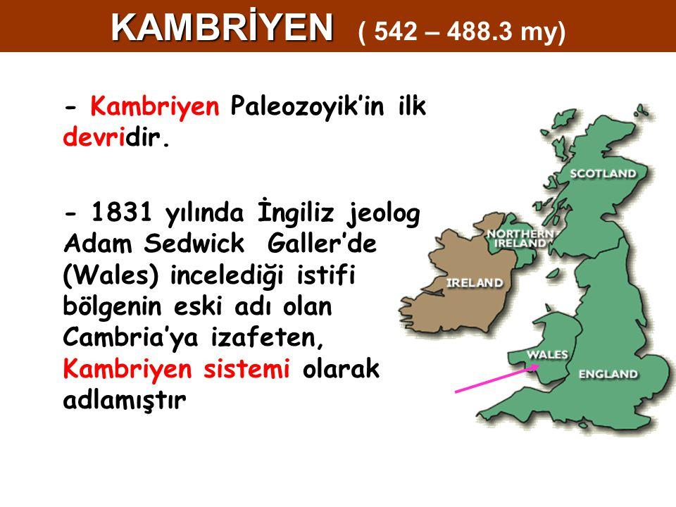 - Kambriyen Paleozoyik'in ilk devridir. - 1831 yılında İngiliz jeolog Adam Sedwick Galler'de (Wales) incelediği istifi bölgenin eski adı olan Cambria'