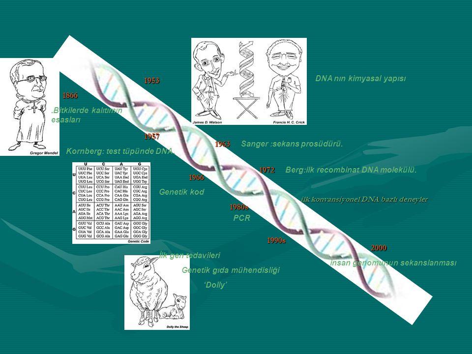 1866.Bitkilerde kalıtımın esasları1953 DNA nın kimyasal yapısı1957 Kornberg: test tüpünde DNA.1963 Sanger :sekans prosüdürü.1966 Genetik kod1972 Berg: