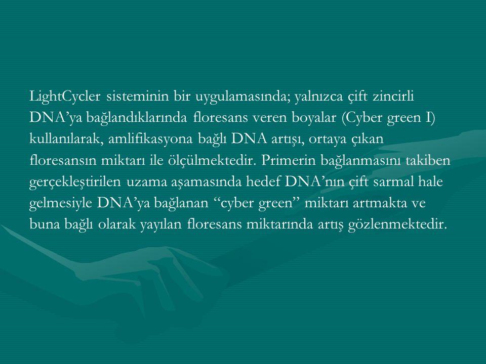 LightCycler sisteminin bir uygulamasında; yalnızca çift zincirli DNA'ya bağlandıklarında floresans veren boyalar (Cyber green I) kullanılarak, amlifik