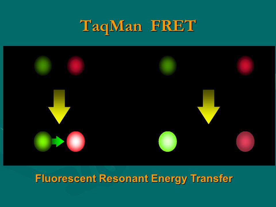 TaqMan FRET Fluorescent Resonant Energy Transfer