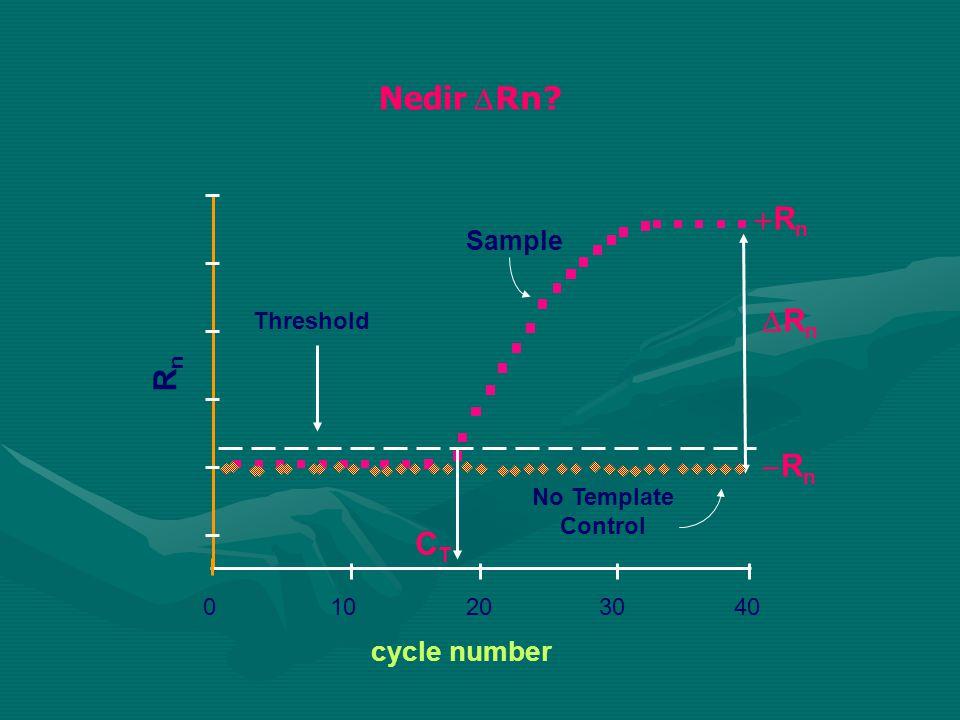 010203040 cycle number RnRn CTCT Threshold RnRn Sample No Template Control Nedir Rn? RnRn RnRn