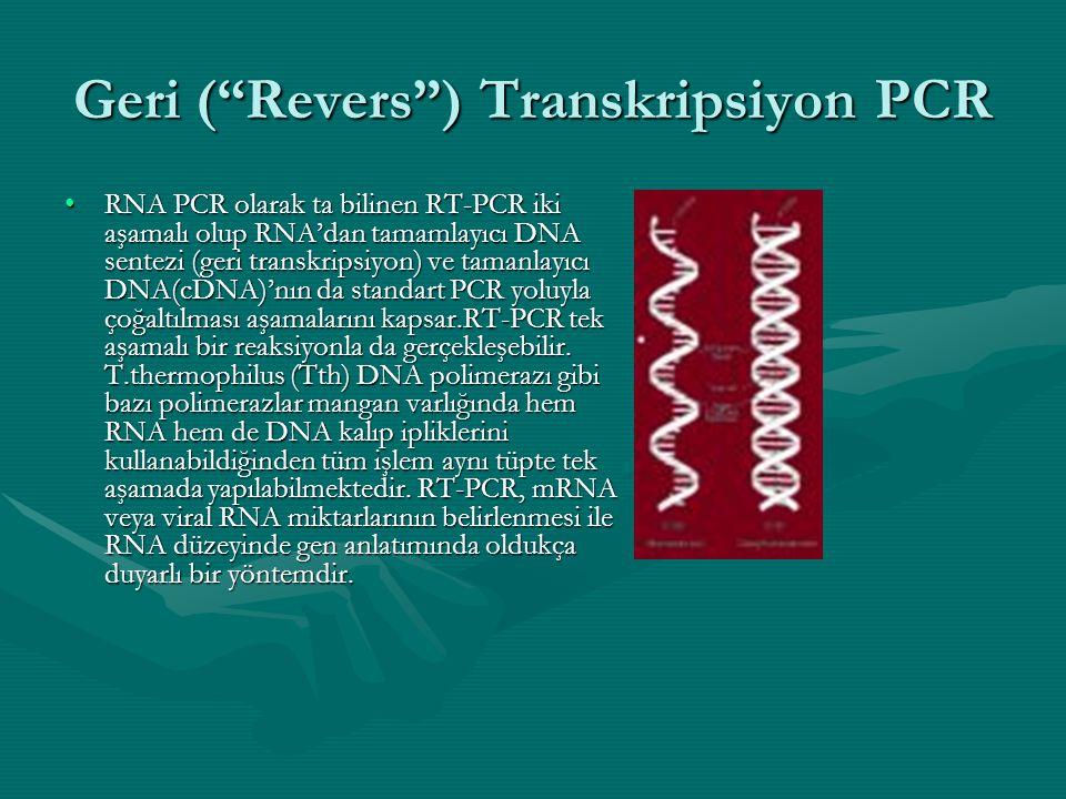 """Geri (""""Revers"""") Transkripsiyon PCR •RNA PCR olarak ta bilinen RT-PCR iki aşamalı olup RNA'dan tamamlayıcı DNA sentezi (geri transkripsiyon) ve tamanla"""