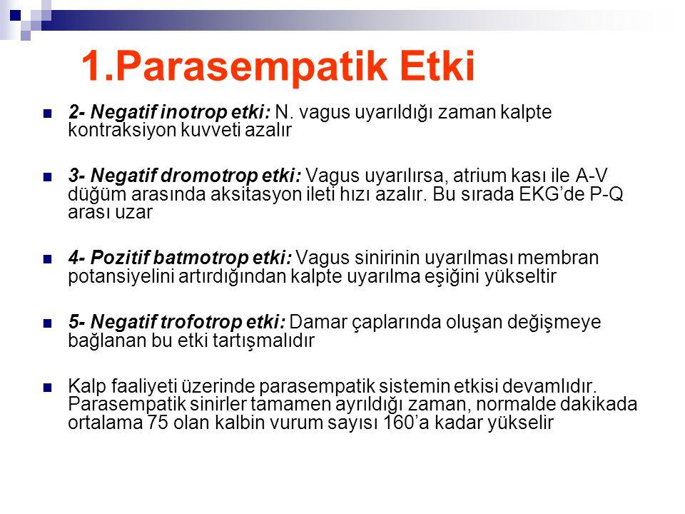 1.Parasempatik Etki  2- Negatif inotrop etki: N. vagus uyarıldığı zaman kalpte kontraksiyon kuvveti azalır  3- Negatif dromotrop etki: Vagus uyarılı