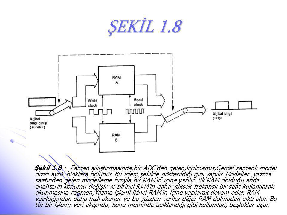 ŞEKİL 1.8 Şekil 1.8 : Zaman sıkıştırmasında,bir ADC'den gelen,kırılmamış,Gerçel-zamanlı model dizisi ayrık bloklara bölünür. Bu işlem,şekilde gösteril