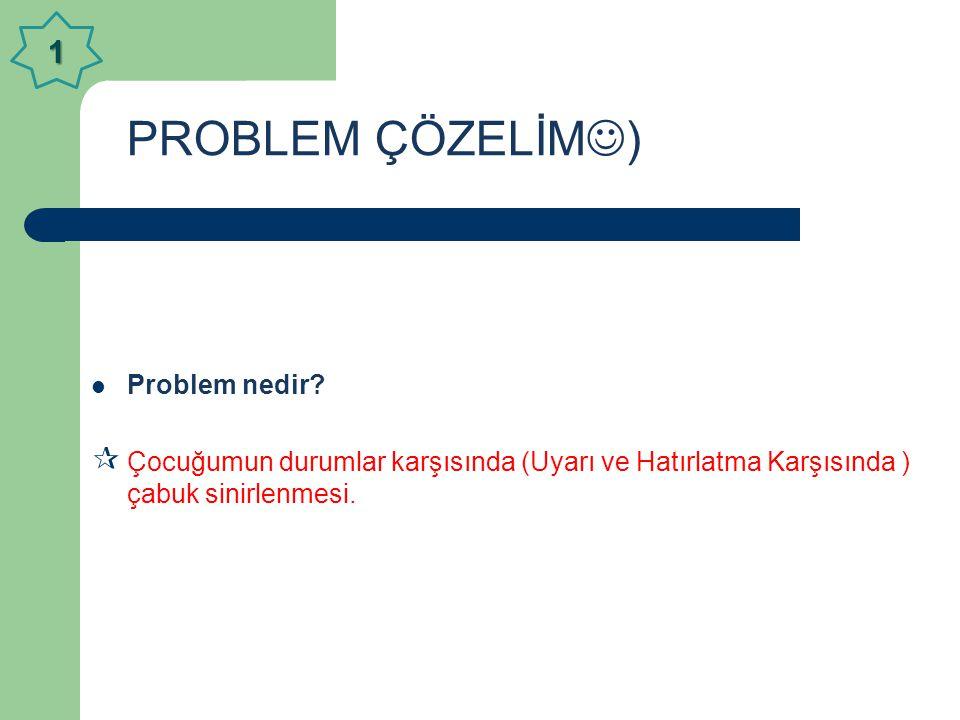PROBLEM ÇÖZELİM  )  Problem nedir.