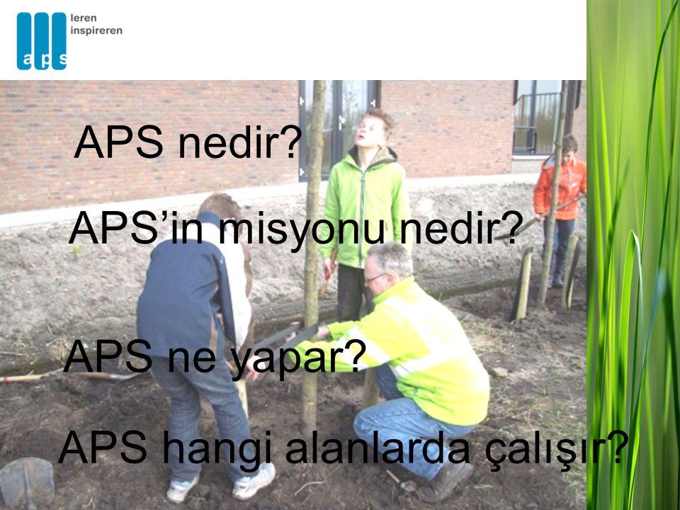 APS hangi alanlarda çalışır APS ne yapar APS'in misyonu nedir APS nedir