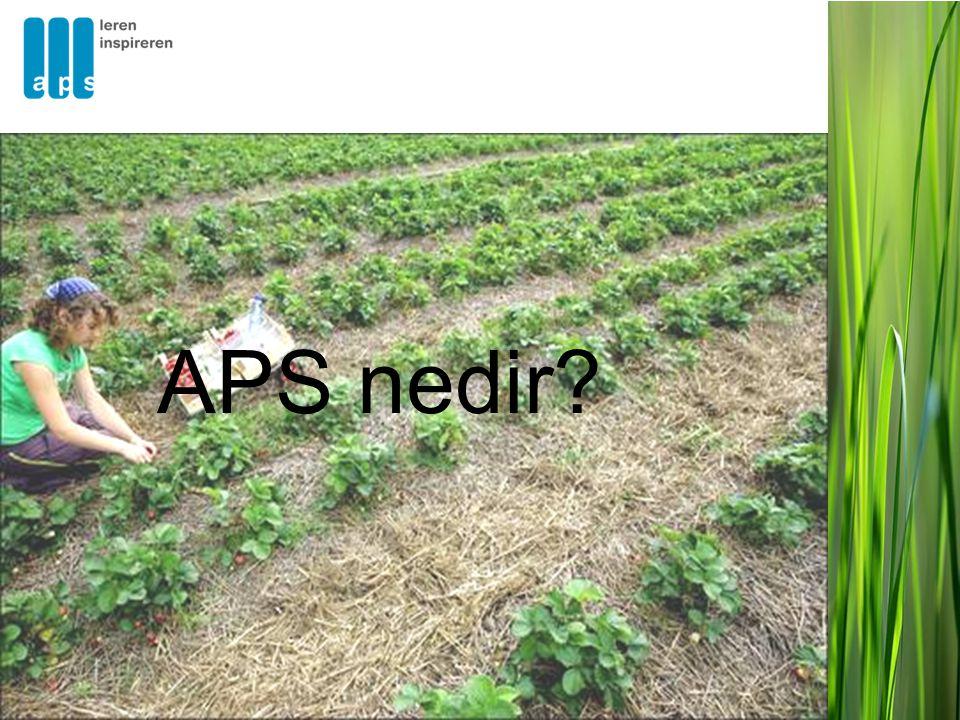 APS'in işbirliĝi yaptıĝı kuruluşlar •APS'e benzer kurumlar •Üniversiteler •Araştırmacılar •Müfredat/içerik uzmanları •Ölçme-deĝerlendirme uzmanları •Yayınevleri •Kamu ve özel sektörlerden danışmanlar