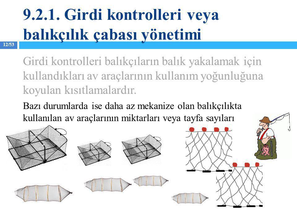 12/53 Girdi kontrolleri balıkçıların balık yakalamak için kullandıkları av araçlarının kullanım yoğunluğuna koyulan kısıtlamalardır. Bazı durumlarda i