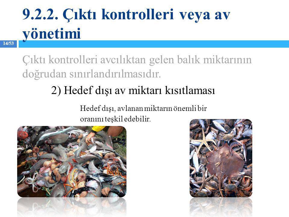 14/53 Çıktı kontrolleri avcılıktan gelen balık miktarının doğrudan sınırlandırılmasıdır. 2) Hedef dışı av miktarı kısıtlaması Hedef dışı, avlanan mikt