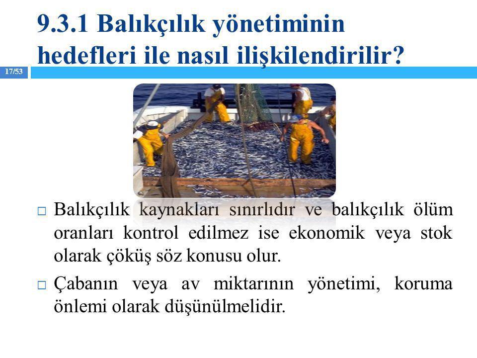 17/53  Balıkçılık kaynakları sınırlıdır ve balıkçılık ölüm oranları kontrol edilmez ise ekonomik veya stok olarak çöküş söz konusu olur.  Çabanın ve