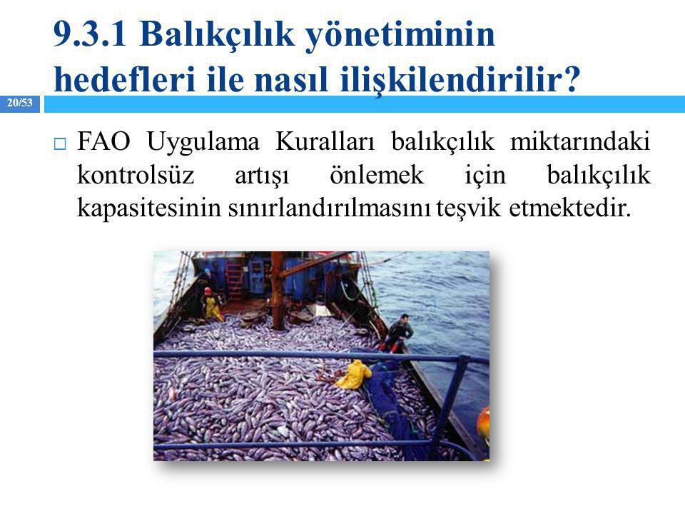 20/53  FAO Uygulama Kuralları balıkçılık miktarındaki kontrolsüz artışı önlemek için balıkçılık kapasitesinin sınırlandırılmasını teşvik etmektedir.