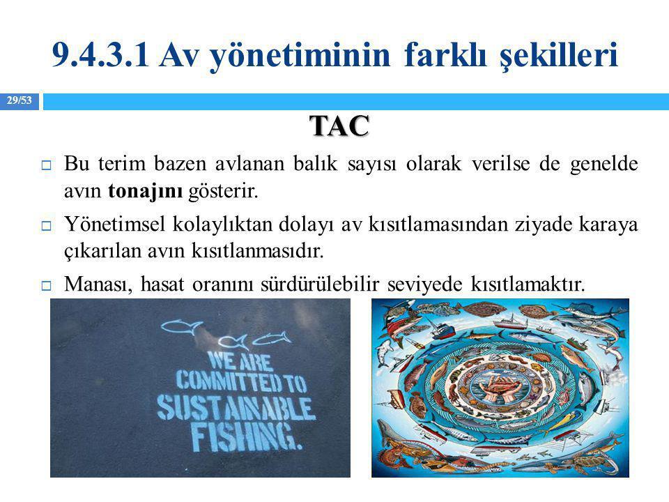 29/53 TAC  Bu terim bazen avlanan balık sayısı olarak verilse de genelde avın tonajını gösterir.  Yönetimsel kolaylıktan dolayı av kısıtlamasından z