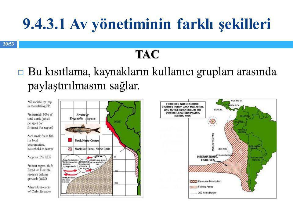 30/53 TAC  Bu kısıtlama, kaynakların kullanıcı grupları arasında paylaştırılmasını sağlar. 9.4.3.1 Av yönetiminin farklı şekilleri