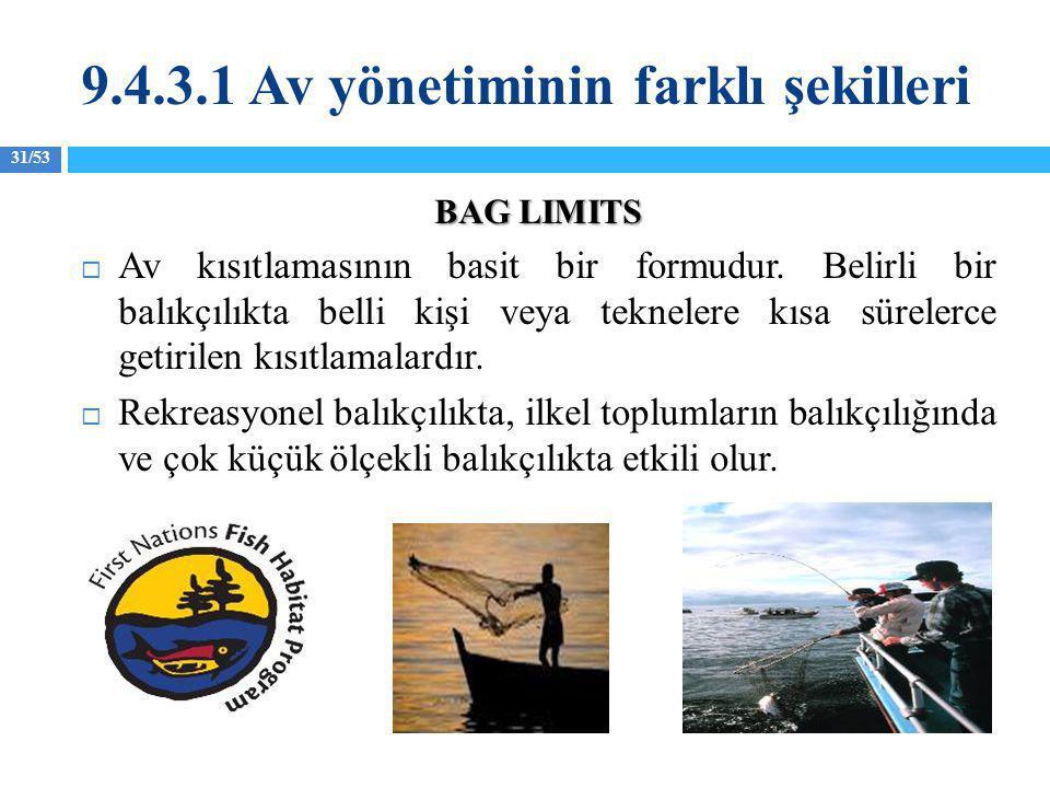 31/53 BAG LIMITS  Av kısıtlamasının basit bir formudur. Belirli bir balıkçılıkta belli kişi veya teknelere kısa sürelerce getirilen kısıtlamalardır.