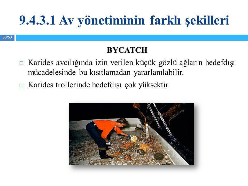 33/53 BYCATCH  Karides avcılığında izin verilen küçük gözlü ağların hedefdışı mücadelesinde bu kısıtlamadan yararlanılabilir.  Karides trollerinde h