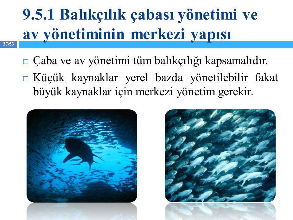 37/53  Çaba ve av yönetimi tüm balıkçılığı kapsamalıdır.  Küçük kaynaklar yerel bazda yönetilebilir fakat büyük kaynaklar için merkezi yönetim gerek