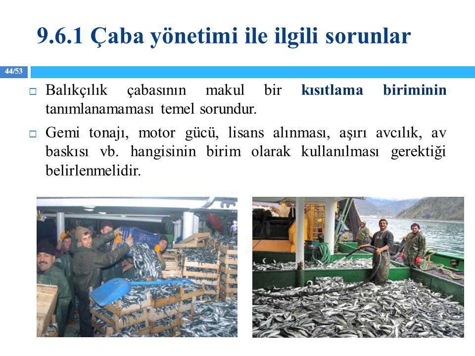 44/53  Balıkçılık çabasının makul bir kısıtlama biriminin tanımlanamaması temel sorundur.  Gemi tonajı, motor gücü, lisans alınması, aşırı avcılık,