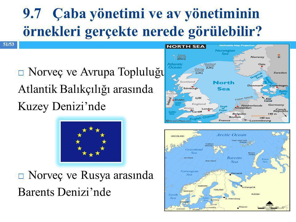 51/53  Norveç ve Avrupa Topluluğu Atlantik Balıkçılığı arasında Kuzey Denizi'nde  Norveç ve Rusya arasında Barents Denizi'nde 9.7Çaba yönetimi ve av