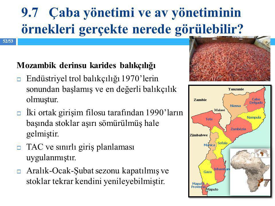 52/53 Mozambik derinsu karides balıkçılığı  Endüstriyel trol balıkçılığı 1970'lerin sonundan başlamış ve en değerli balıkçılık olmuştur.  İki ortak