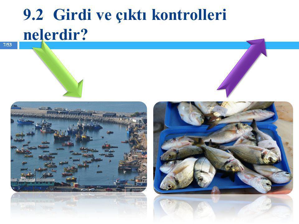 8/53 Girdi kontrolleri balıkçıların balık yakalamak için kullandıkları av araçlarının kullanım yoğunluğuna koyulan kısıtlamalardır.
